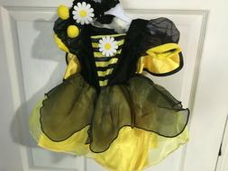 Koala Kids Girl's Bee Costume 3-6 Month *New w/Tags* d1