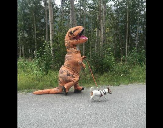 Inflatable Costume, Child's Small Jurassic
