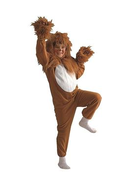 RG Costumes Lion Costume, Child Boy Size 4 to 14 For Plays,