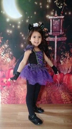 NWT Bat Fairy Hallowen Costume for Kids, Size 2t, 3t-4t 'cho